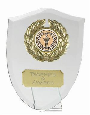Acolade Jade Glass Award