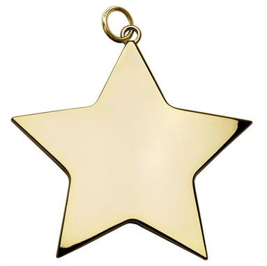 Star 54mm medal