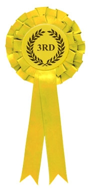 Yellow 3rd Place Two Tier Rosette zoomed