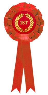 Red 1st Place Two Tier Rosette