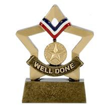 Well Done Mini Star Trophy Award