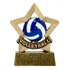 Volleyball Trophy Mini Star Award