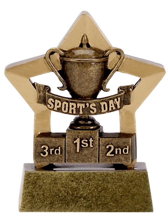 Sports Day Mini Star Award