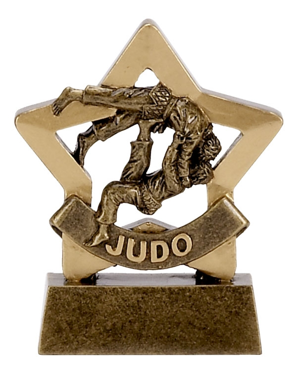 Judo Mini Star Award