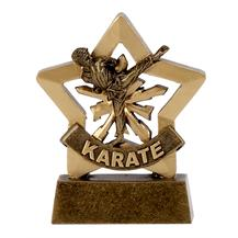 Karate Male Mini Star Award