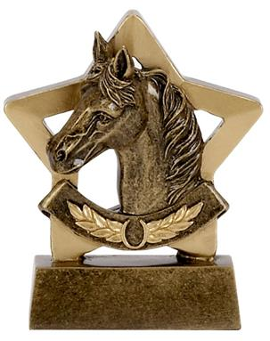 Equine Mini Star Award