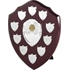 Perpetual Annual Shield