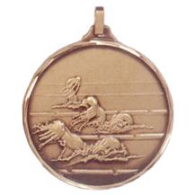 Faceted Swimming Medal - Lanes