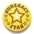 Numeracy Star Pin Badge