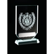 Glass Darts Shield Trophy