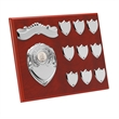 Perpetual Plaque Annual Shields