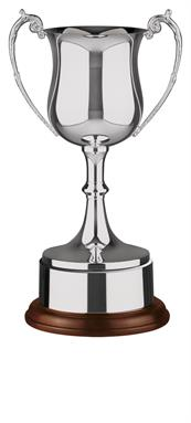Nickel Plated Trophy