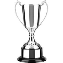 Silver Plated Trophy Cup