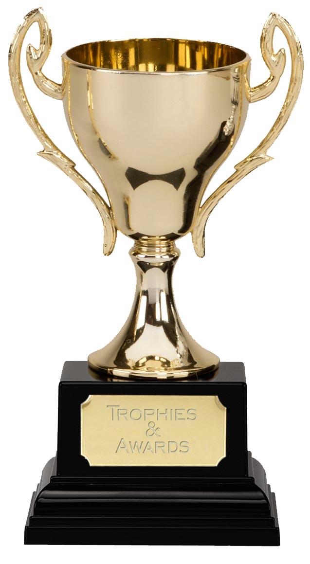 Image Gallery metal trophy - 191.2KB