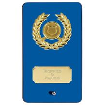 Blue Mirror Glass Plaque Award JC133DQ
