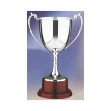 Hallmarked Silver Trophy Cup Mounted on Solid Mahogany Base