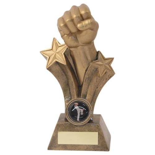 JR11-RF528 Bronze/Gold Resin Martial Arts Fist Trophy