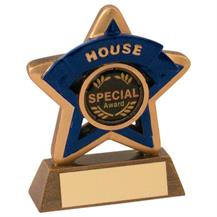 JR44-RF400B Bronze/Gold/Blue House Mini Star Trophy (1In Centre)