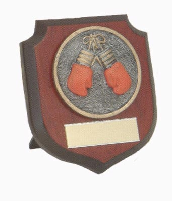 Boxing  Shield
