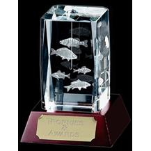 Optical Crystal Fishing Award