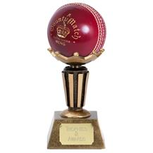 A1005 CRICKET Ball Holder