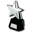 'Stunning' Metal Star Trophy