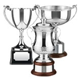 All types of Trophy Cups