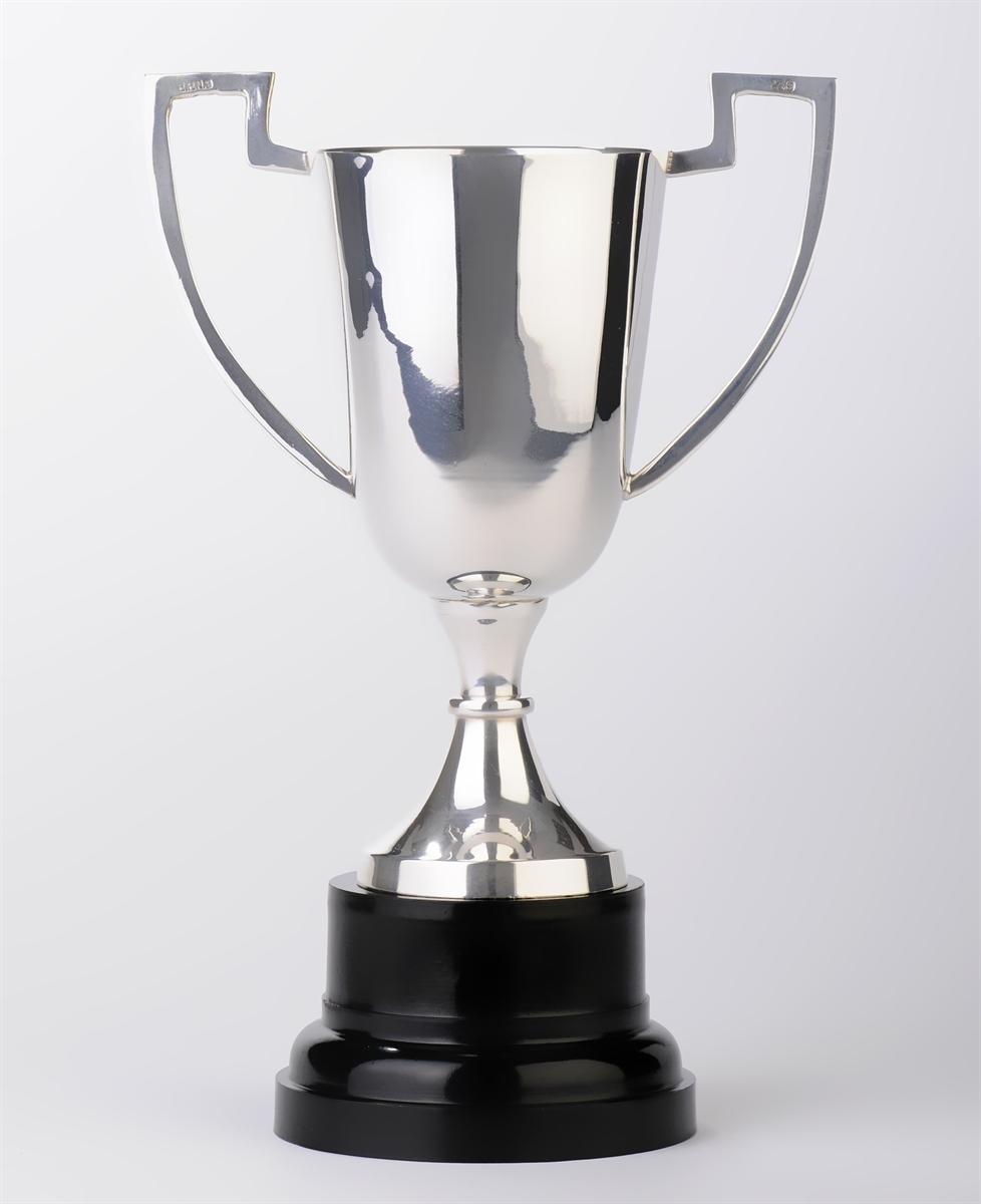 silver plated trophy cups  u0026 39 bison u0026 39  range p51