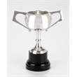 Chiltern Silverplated Trophy Cup
