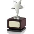Antique Silver Finish Solid Metal Star Award