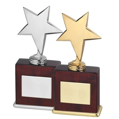 Highly Polished Solid Metal Star Awards on Wood Bases - 2 Colours available