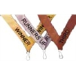 SPECIAL OFFER : Winner, Runner Up or Third Ribbons