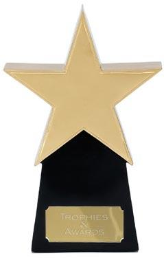 Resin Gold Star Award