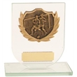Beautiful Glass Plaque Resin Disc Football Trophy