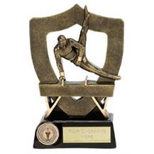 Resin Gymnastics Award - Male Pommel Horse