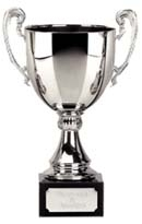 Salcombe Silver Cup Trophy zoomed