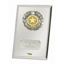 Crest Mirror Silver Jade Glass Award