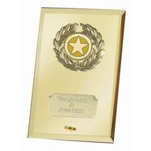 Crest Mirror Gold Jade Glass Award